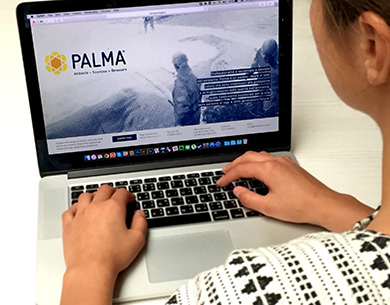 Palma website desktop